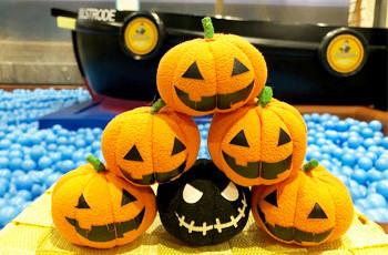 ブレンダム・ドックでかぼちゃ探し♪